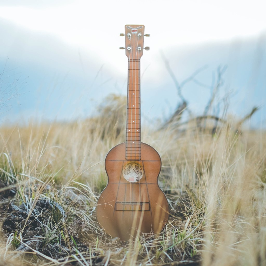 Outdoor Ukulele Brown Tenor